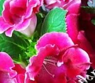 Горшки для цветов из дерева под старину фото